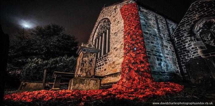 OPC Poppies - Colin Charlesworth